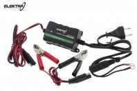 Caricabatterie Mantenitore di Carica Automatico 6V 12V